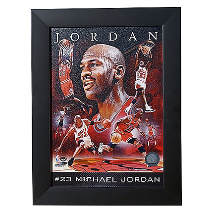 Chicago Bulls Michael Jordan Framed Photo #1